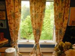 Window treatment detail